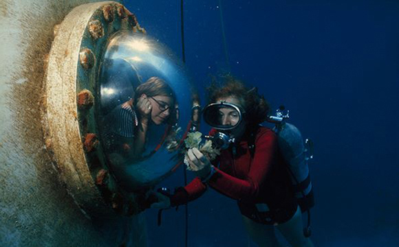 Sylvia Earle Gallery01